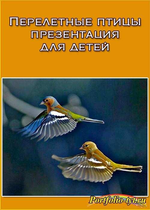 Перелетные птицы презентация для детей